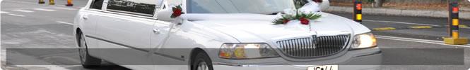 transport special nunta 1
