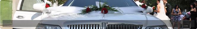 transport special nunta 2