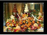 Cascada fructe - Bar de fructe #4