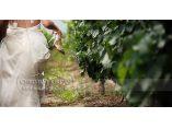 Chic Wedding Photography by Christine Jordan #6
