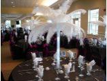 Aranajmente Pene de Strut Lux - Select Events - Agentie Organizare Nunta, Botez #2