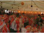 Cort nunta, evenimente, catering #3