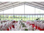 Cort nunta, evenimente, catering #5