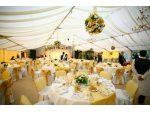 Cort nunta, evenimente, catering #8
